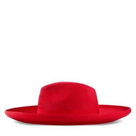 宽边毛毡帽